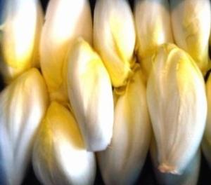 insalata belga