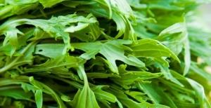 insalata mizuna
