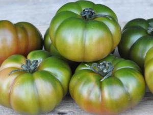 Pomodoro marinda